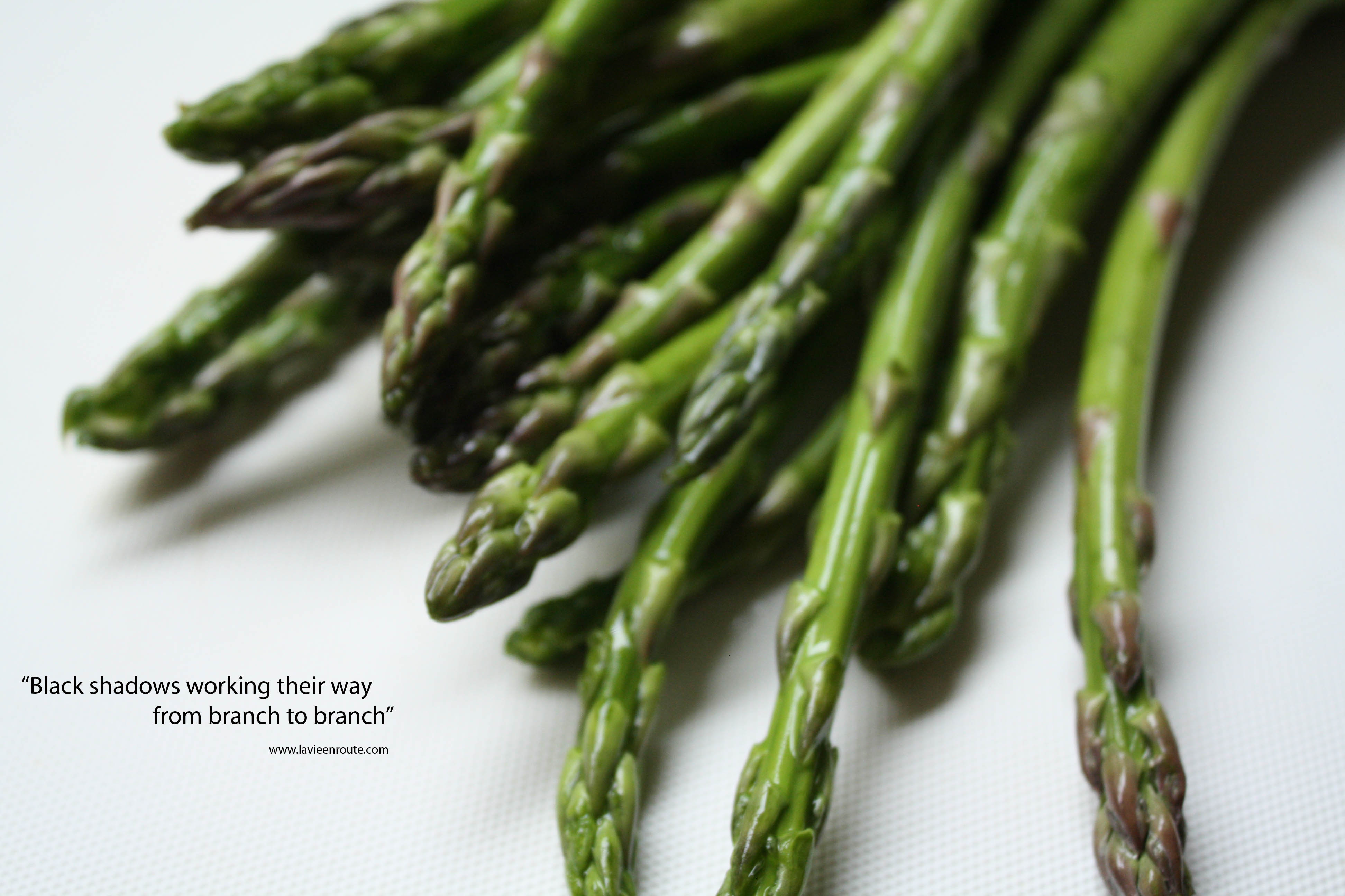 recipes for cooking asparagus